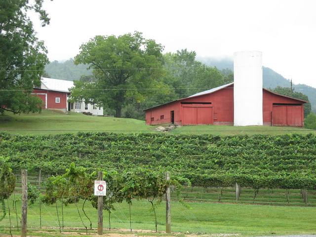 Persimmon Creek Vineyards