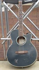 cuatro(0.0), slide guitar(0.0), electric guitar(0.0), banjo uke(0.0), bass guitar(0.0), string instrument(1.0), acoustic guitar(1.0), guitar(1.0), acoustic-electric guitar(1.0), string instrument(1.0),
