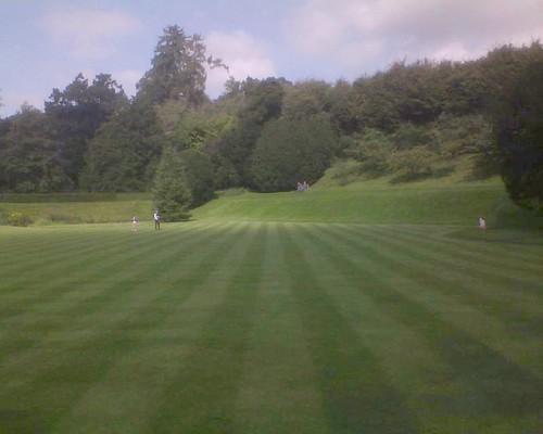 Posh lawn