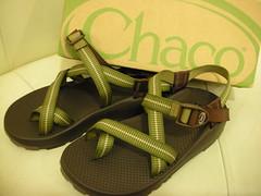 shoe(0.0), halter(0.0), leather(0.0), flip-flops(0.0), brown(1.0), footwear(1.0), sandal(1.0), green(1.0),