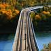 DUDLEY B MENZIES BRIDGE by *Furball*