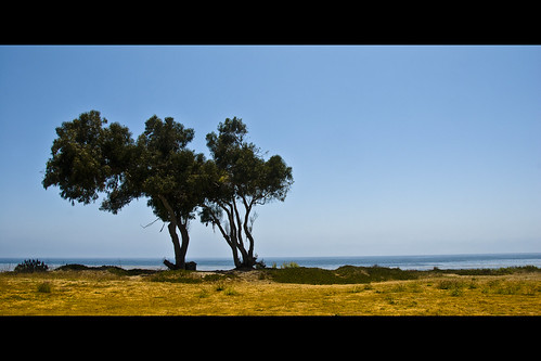ocean california blue trees summer sky usa seascape green nature topf25 colors grass yellow santabarbara digital america landscape geotagged coast nikon colorful seasons tl framed meadow dry sunny bluesky onecolor d200 nikkor dslr thecolorblue islavista goleta 18200mmf3556 utatafeature manganite nikonstunninggallery pcific repost1 date:year=2008 date:month=july date:day=25 geo:lat=34409601 geo:lon=119863125 windowtotheseapark format:orientation=landscape format:ratio=21 repost2
