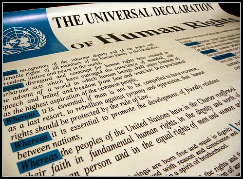 60th anniversary Universal Declaration of Human Rights by Optical illusion