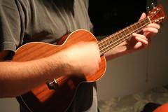 bassist(0.0), viola(0.0), slide guitar(0.0), bass guitar(0.0), cuatro(1.0), string instrument(1.0), ukulele(1.0), viol(1.0), acoustic guitar(1.0), guitarist(1.0), guitar(1.0), string instrument(1.0),