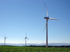machine, windmill, wind, wind farm, electricity, wind turbine, grassland,