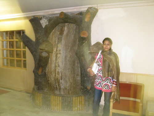 Manali Trip 2008