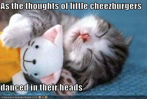 thoughts of wittle cheezburgers danced n der headz
