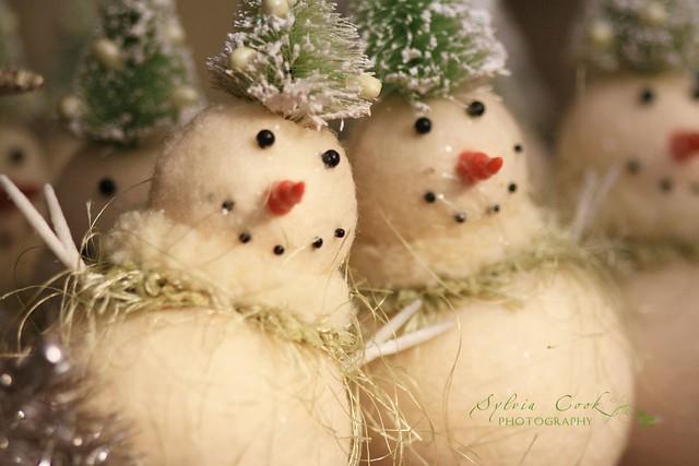 Snowmen without snow - a gallery on Flickr  Dank Frosty Snowman