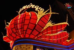 festival(0.0), carnival(0.0), performance(0.0), amusement ride(0.0), event(1.0), mid-autumn festival(1.0), illustration(1.0), night(1.0), amusement park(1.0),