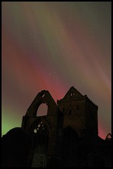 Sweetheart Abbey Aurora