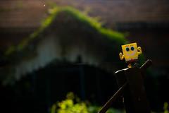"""SpongeBob enjoys a sunny day on his weekend getaway ... """