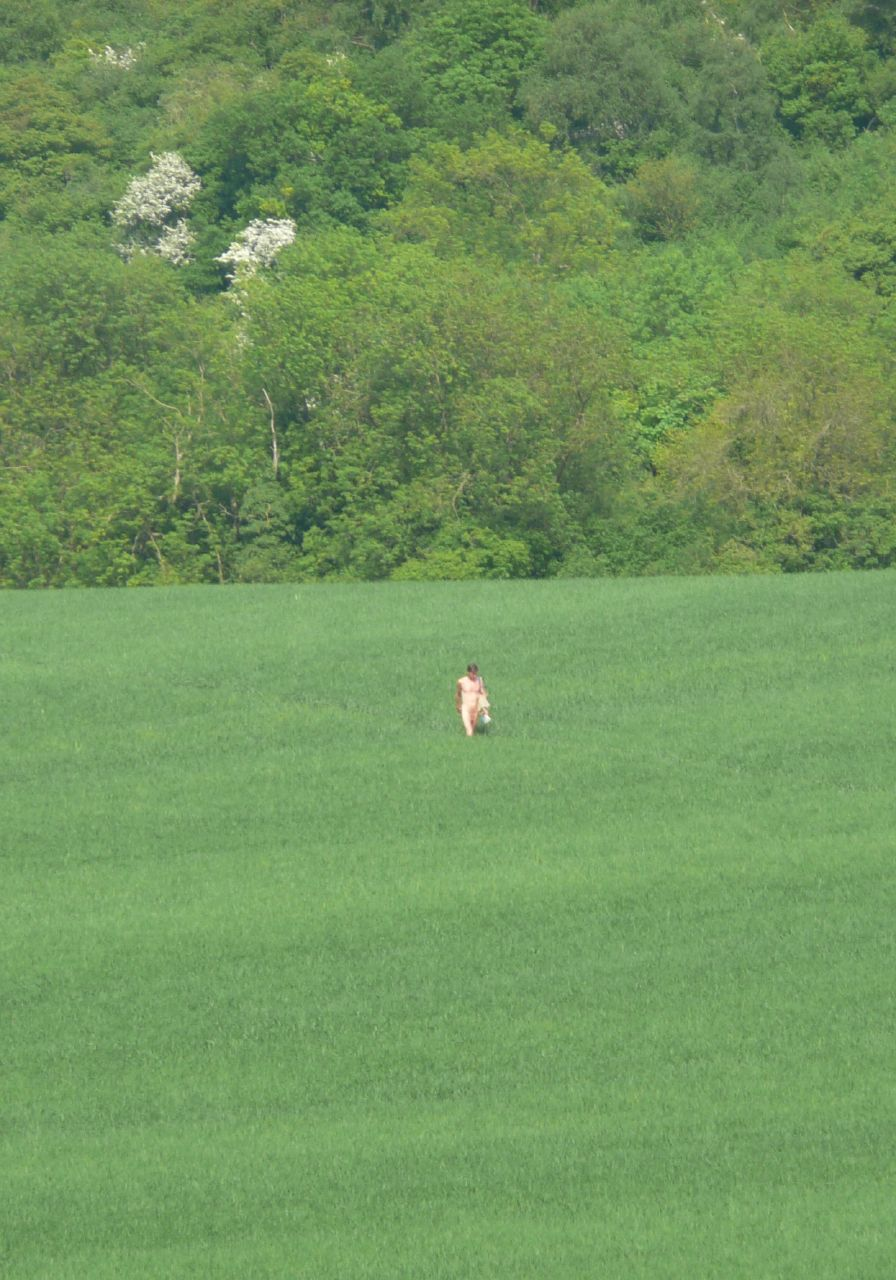 Book 1, Walk 53, Wye Circular Green field, pink walker, 10 May '08.