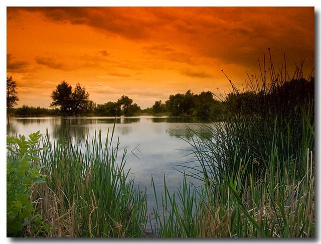 Early July, Sinton Pond, Colorado Springs