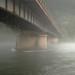 Foggy River by briankosena