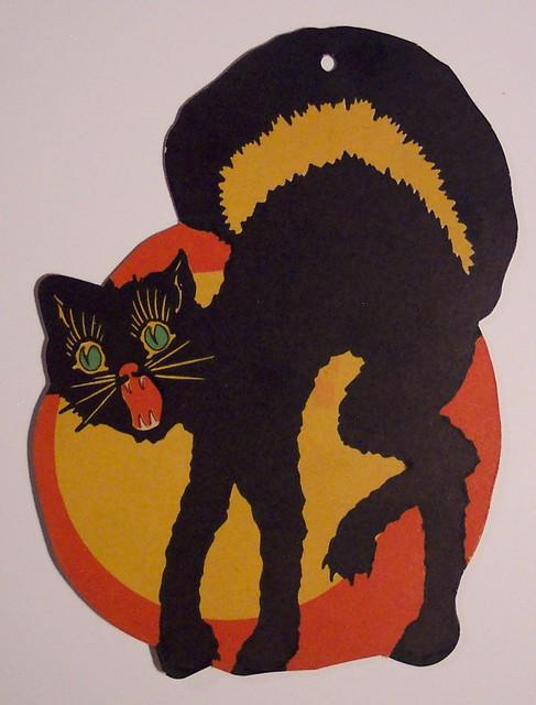 Cat vintage halloween