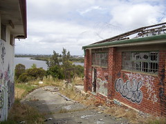 Albany Bell Hatchery View