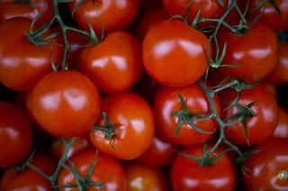Italian Vine Tomatoes