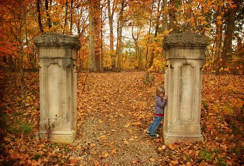 autumn color fall leaves gate path kentucky entrance louisville deerhunter cherokeepark