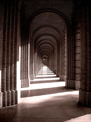3.Photographer's favourite...Forest Research Institute , Dehradun