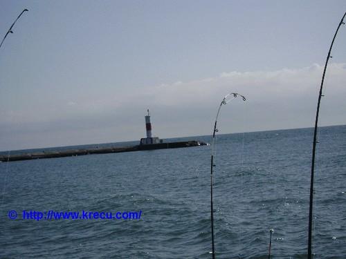 Lake michigan king salmon fishing charther from waukegan for Lake michigan salmon fishing