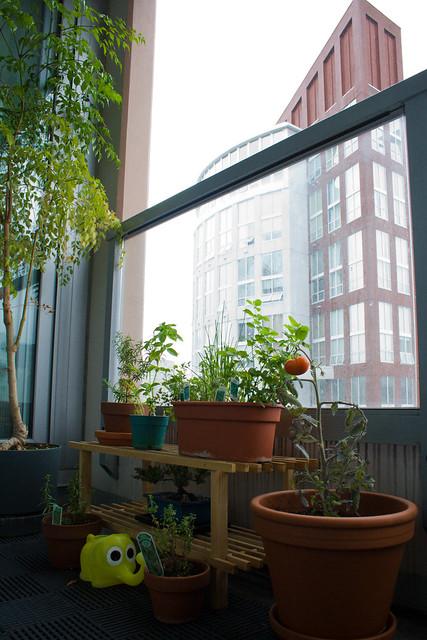 balcony bliss high rise herb garden flickr photo sharing