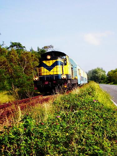 Pociąg z Kuźnicy, autor: faxepl, źródło: flickr.com