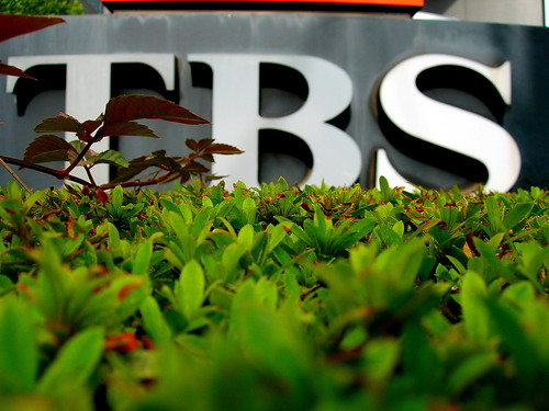 Logo del canal nipon TBS