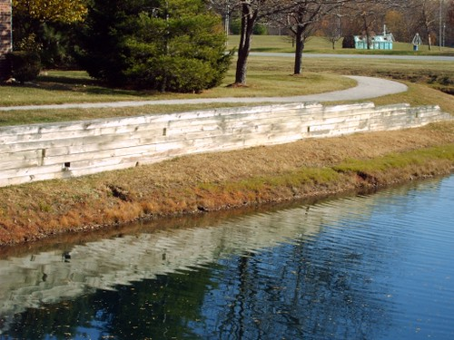 Landscaping Pond Banks : Muskrat damage to pond banks and retaining wall flickr photo