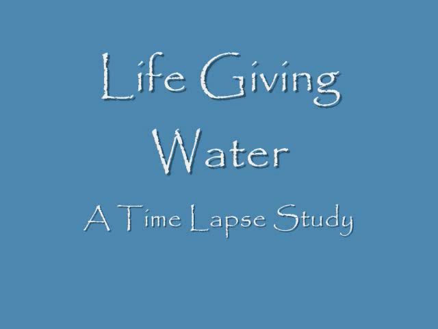 Life Giving Water - Time Lapse