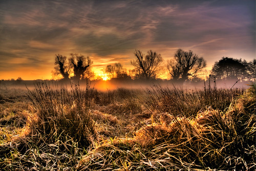 mist sunrise river norfolk willows hdr castleacre watermeadows blueribbonwinner otw bej fineartphotos golddragon abigfave platinumphoto anawesomeshot betterthangood theperfectphotographer goldstaraward overtheshot damniwishidtakenthat goldenheartaward