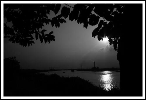 Black & White Evening