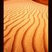 UAE-Dubai-sanddunes