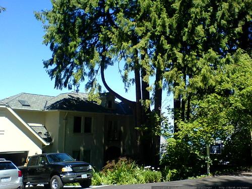 home for sale in lake oswego   DSC01478