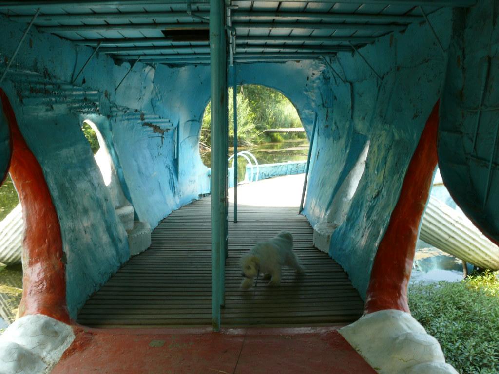 Route 66 Inside the Blue Whale Catoosa, Oklahoma