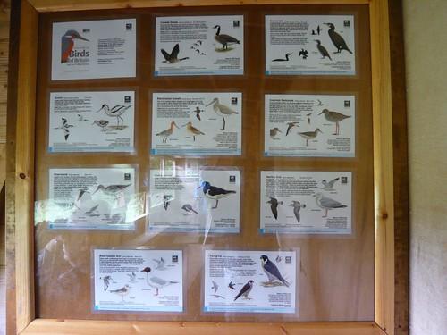 島上的潟湖區目前由野生物信託組織管理,其針對海岸溼地內會出現的候鳥進行解說。