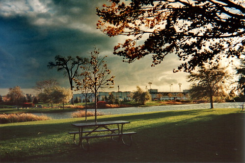 park camera autumn sky cloud canada storm tree fall film public grass automne vintage wow bench table landscape vent evening picnic montréal wind lawn nostalgia souvenir ciel québec nuage paysage parc orage pelouse disposable appareil tempête jetable impressionsexpressions parcjarry festivaldescouleurs étéindien stadedumaurier
