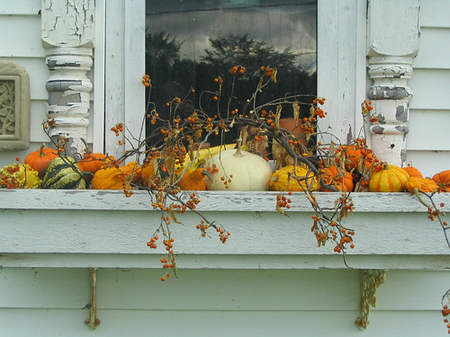 Fall ified window boxes newlywoodwards for Autumn window decoration