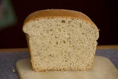beer bread(0.0), rye(0.0), whole grain(0.0), sliced bread(0.0), baking(1.0), bread(1.0), rye bread(1.0), baked goods(1.0), ciabatta(1.0), food(1.0), brown bread(1.0), sourdough(1.0),
