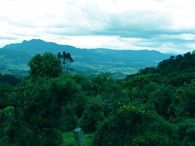 Guasca