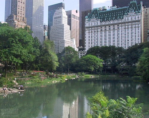 NYC-Central Park duck pond and the Plaza Hotel ©