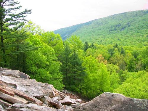 trees sky terrain mountain green forest dark grey rocks bright pennsylvania rocky spot pa landslide wesley uphill glacial