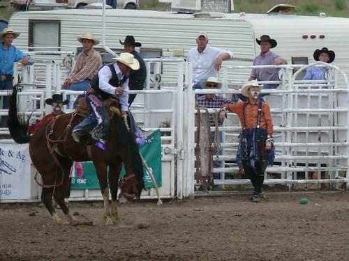 rodeo pioneerday manassa