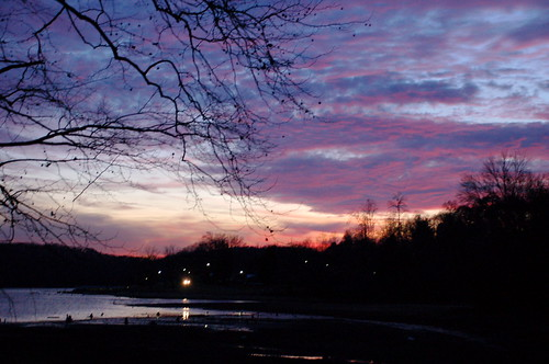 pink blue sunset sky orange black color reflection tree beautiful sunrise darkness purple tennessee branches