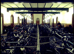 City Hall Bike Parking