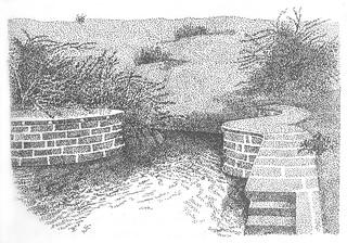 "Graphics from the book ""Aaj Bhi Khare Hai Talaab"
