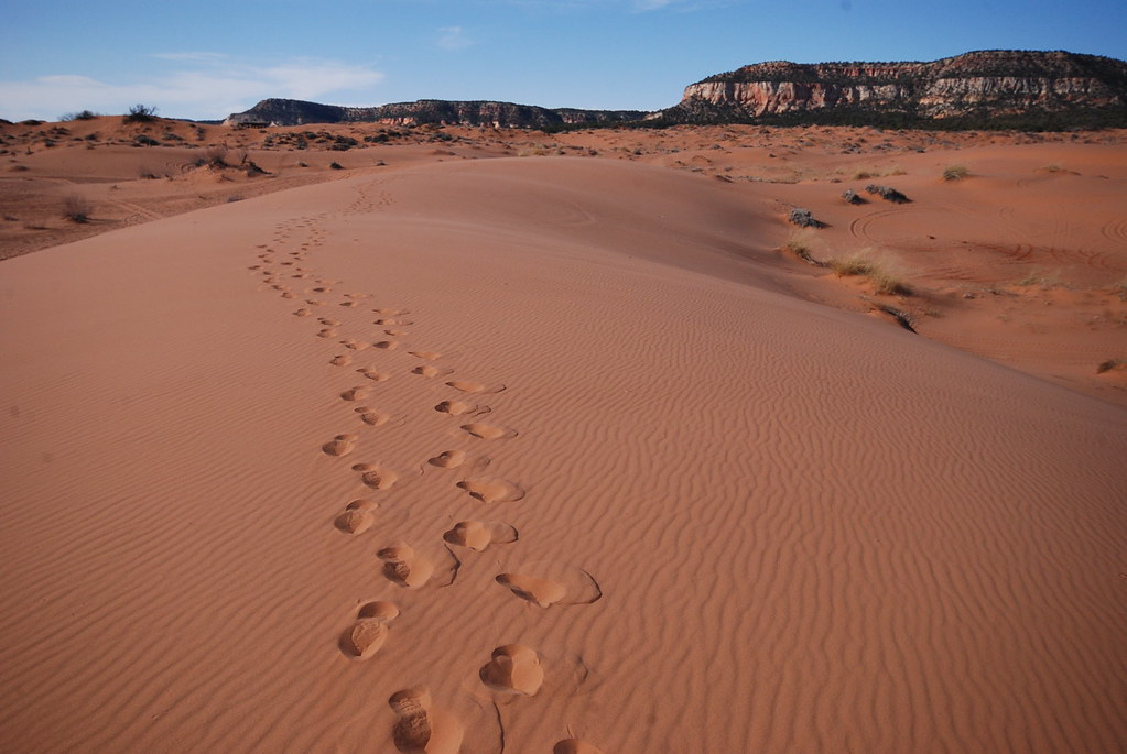 Hiking the Coral Sand Dunes
