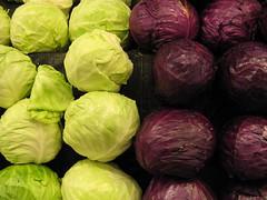 Bipolar Cabbage