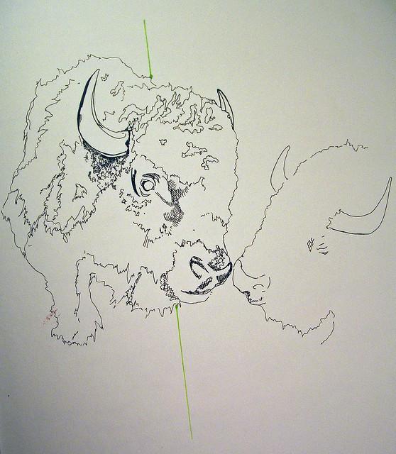 buffalo luv