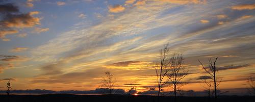 morning november trees panorama sun silhouette clouds sunrise dawn vermont vt randolph canon40d