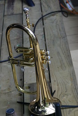 string instrument(0.0), sousaphone(0.0), tuba(0.0), saxhorn(0.0), saxophone(0.0), baritone saxophone(0.0), helicon(0.0), euphonium(0.0), types of trombone(0.0), alto horn(0.0), bass guitar(0.0), trumpet(1.0), brass instrument(1.0), wind instrument(1.0),